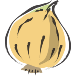 Illustration of one of ingredients, onion