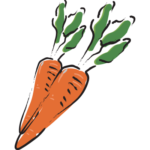 Illustration of one of ingredients, Carrot